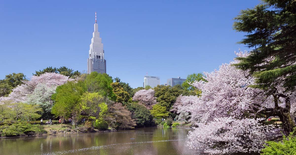 parc Shinjuku Gyoen